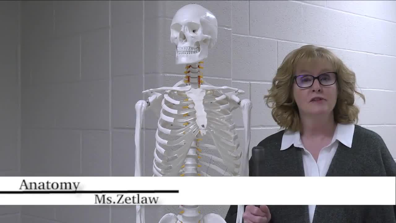 Anatomy | Lakeside High School