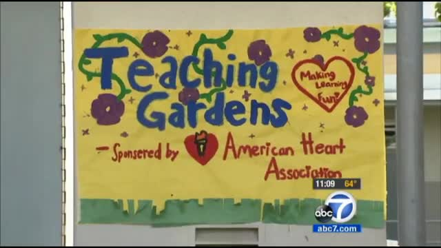 Fremont Teaching Garden featured on ABC 7