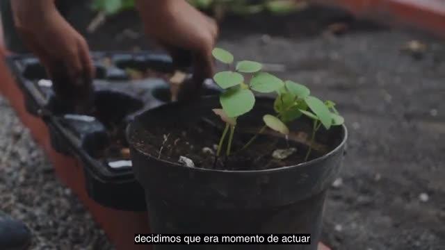 ASPV Sustainability