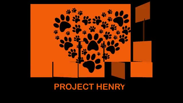Project Henry pictures