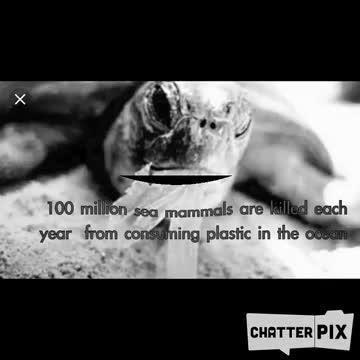 3rd Grade Recycling PSA 2