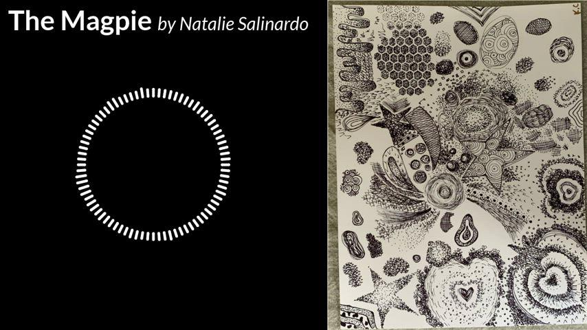 The Magpie by Natalie Salinardo.