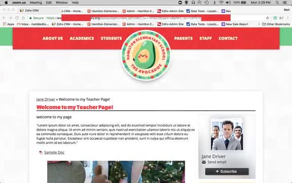 Webinar screencap