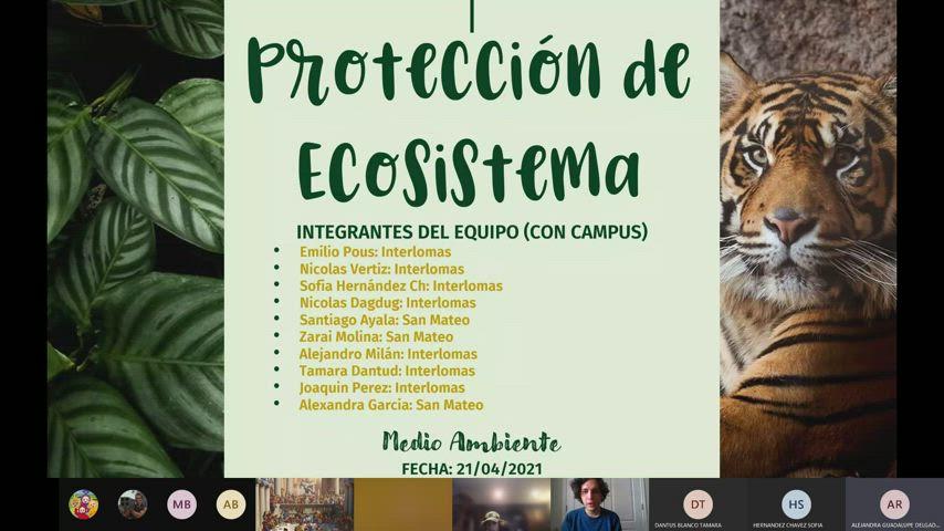 Medio Ambiente 5