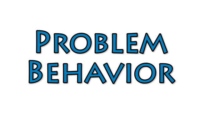 Problem Behavior