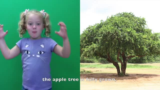 Here you can view our ECE kids  describing their field trip to the apple orchard.