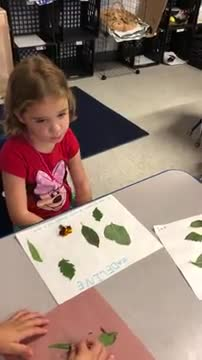Madeline's Leaf Collage