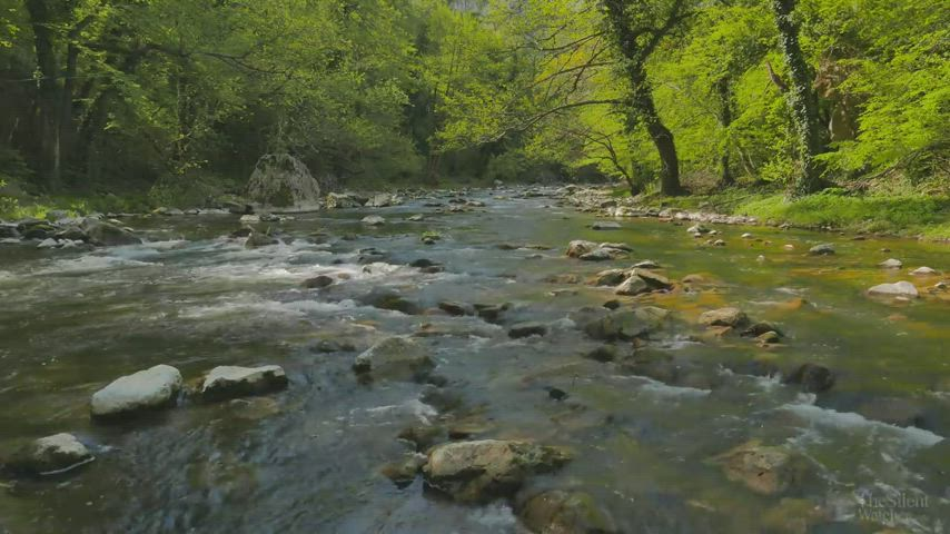 Flowing river sounds