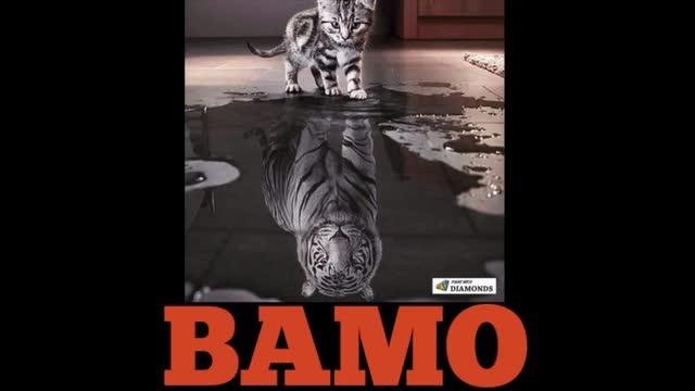 BAMO's First Theme Song