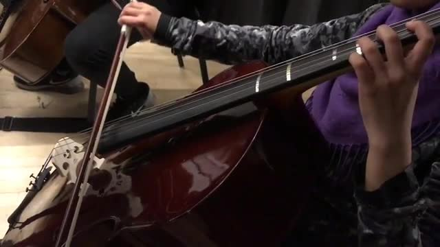 high school students perform with various string instruments