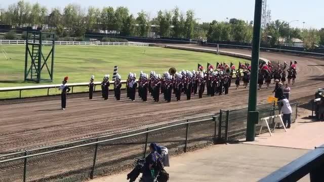 Pioneer Mustang Band