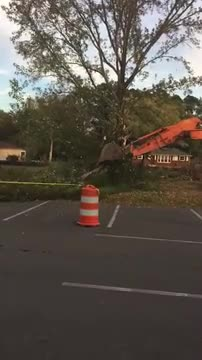 trees coming down for new parking lot