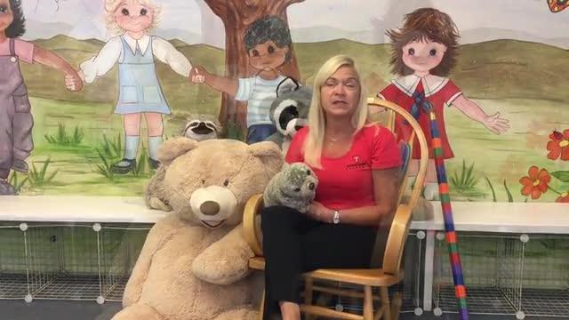 Mrs. Kim Tibbetts - Kindergarten Teacher