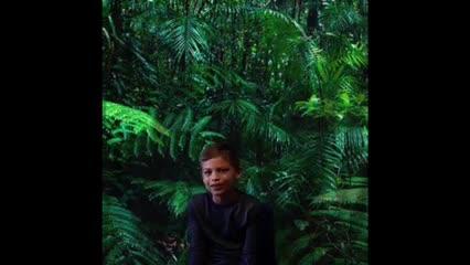Rainforest PBL