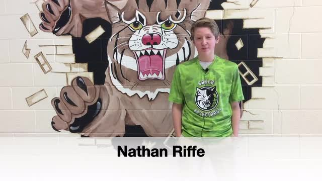 Bobcats of the Month - January 2017