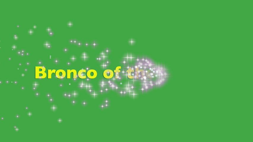 May 2021 Bronco of the month announcements